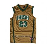 Maglia St. Vincent-st. Mary Lebron James No 23 Or